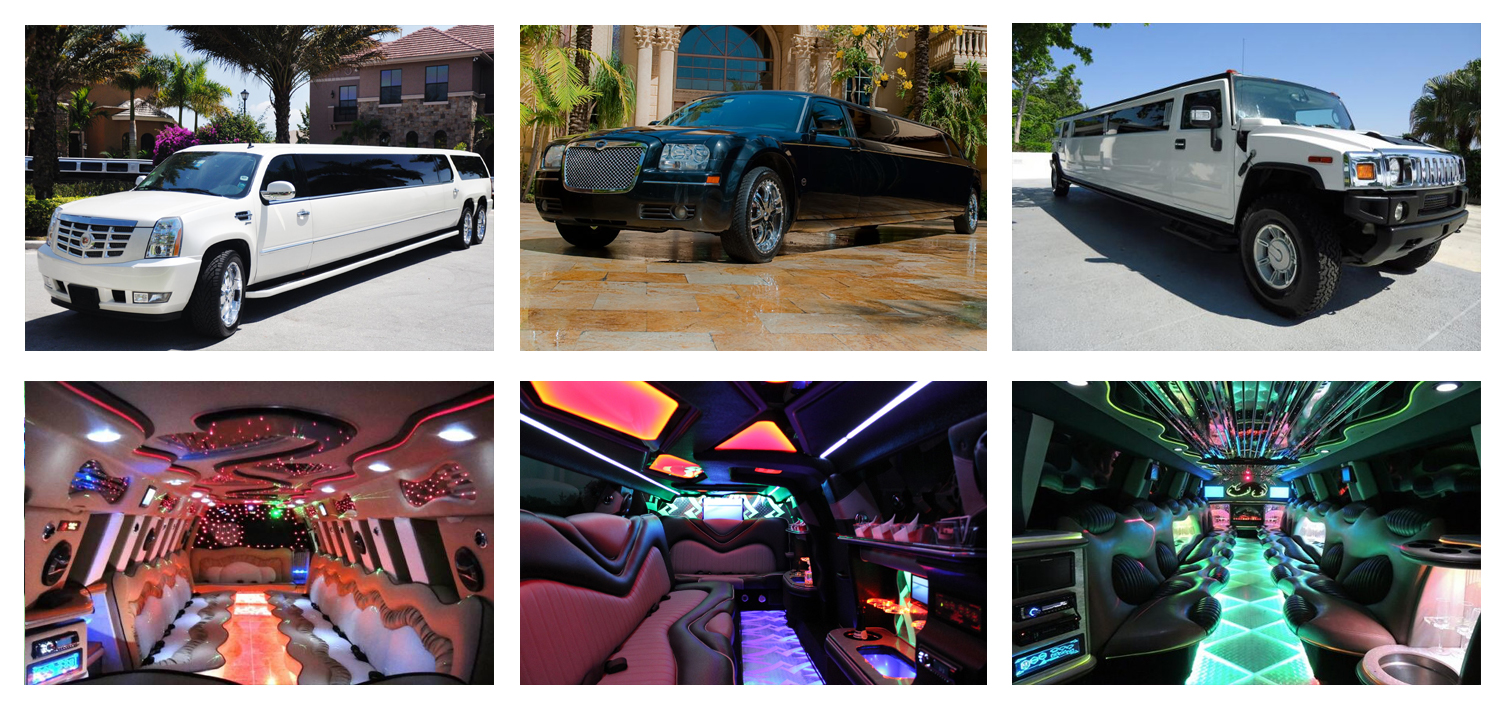Wedding Limo Service & Party Bus Rentals